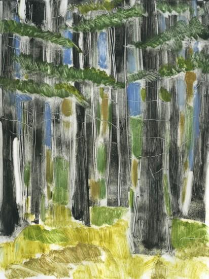 Woods Variation 1