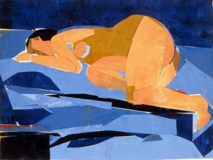brooks_robin.sleeping woman