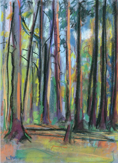 Woods, Mackworth